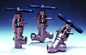Petrochemicals Workforce Development